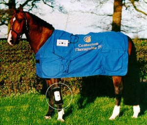 Centurion Therapulse - Equine blanket