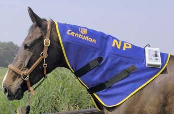 Centurion Equine Neck Piece